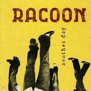 racoon another-day