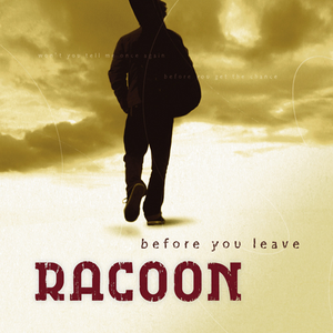 racoon before-you-leave