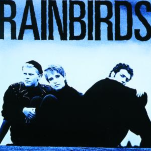 rainbirds rainbirds