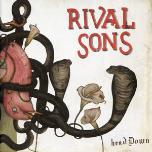 rival-sons head-down