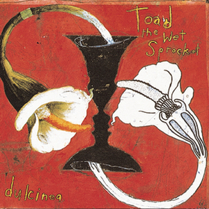 toad-the-wet-sprocket dulcinea